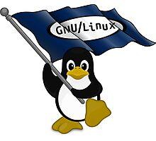 W gnu/Linux Photographic Print