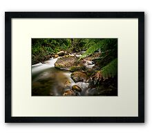 A Shaded Retreat Framed Print