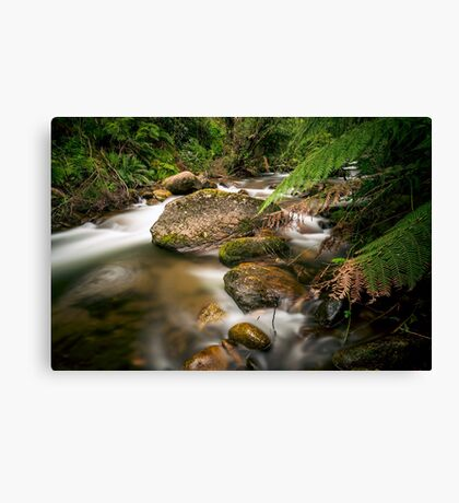 A Shaded Retreat Canvas Print