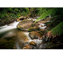 A Shaded Retreat Photographic Print