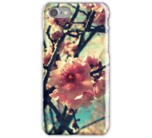 Vintage Blooms iPhone Case/Skin