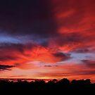 Sunrise - Hay, NSW by Mark Cooper