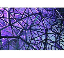 Purple Web Photographic Print