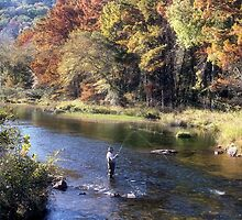 A Fisherman's Paradise by Carolyn  Fletcher