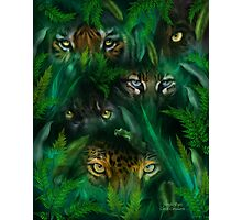 Jungle Eyes Photographic Print