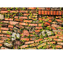 Brick and Stone Wall Photographic Print