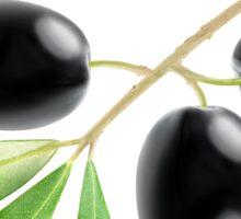 Branch with three black olives Sticker
