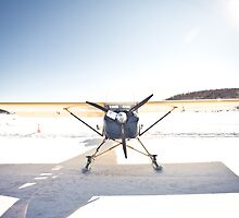 The Plane On The Frozen Lake by Nicolas Goulet