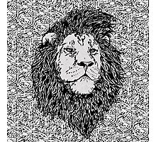 King of the Jungle, Lion in Black & White  Photographic Print