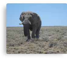 Lonely walk across the plains Canvas Print