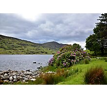A Scene from Kerry Photographic Print