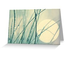 morning blues Greeting Card