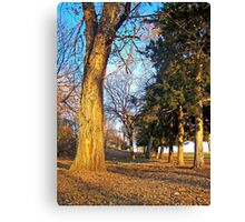 Military Road Canvas Print