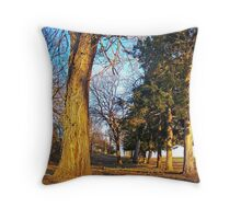 Military Road Throw Pillow