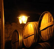 Oporto Old Bodega Light by Sue Ballyn