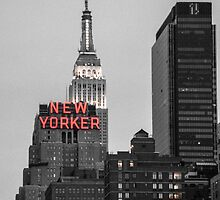 The New Yorker by Brad Walsh