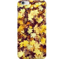 Autumn & Leaves  iPhone Case/Skin