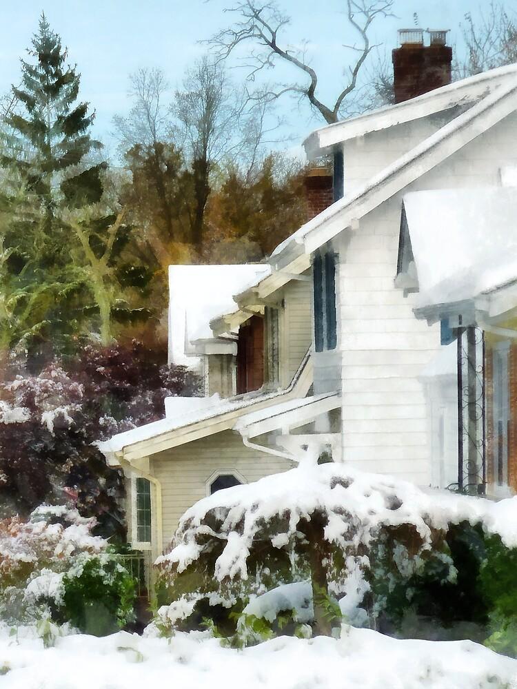 First Snow by Susan Savad