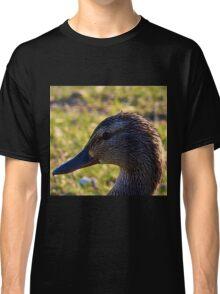 Mallard Duck Head Shot Classic T-Shirt