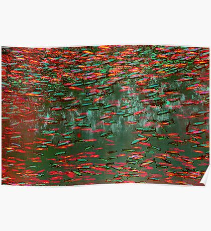 Underwater Abstract Gallery - Piece 11 (Red and Green) Poster