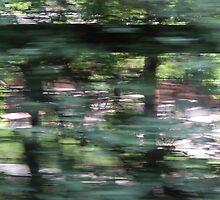 Rushing by Andrea Patino