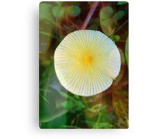 Mushroom Sun Canvas Print