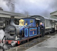 The Bluebell Rail (3) by Larry Lingard-Davis