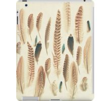 Found Feathers iPad Case/Skin