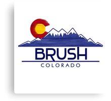 Brush Colorado wood mountains Canvas Print