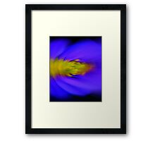 Chrysanthemum, abstract Framed Print
