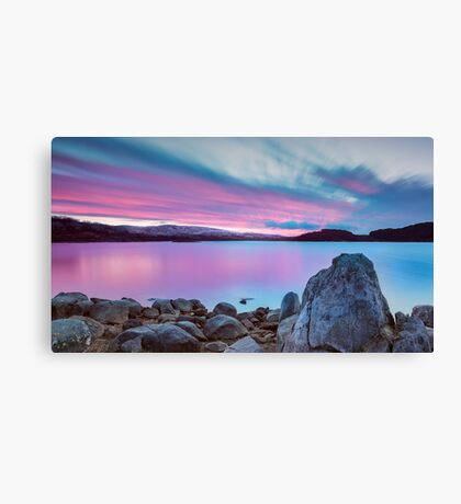 Rose Coloured Glasses Canvas Print