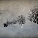 Winter&#x27;s Work by Annie Lemay  Photography