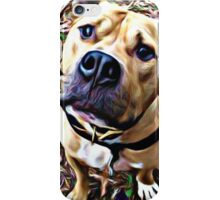 Pit Bull Rescue Beauty (1) iPhone Case/Skin
