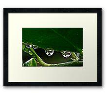 A Rainy Day Framed Print