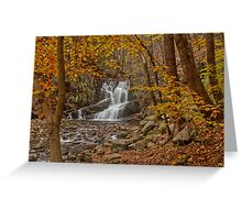 Indian Brook Waterfalls Greeting Card