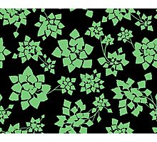 Water caltrop pattern in black and green Photographic Print