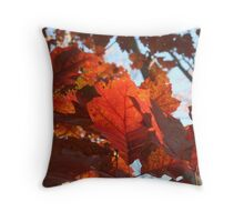 Sun Touched Oak Leaves Throw Pillow