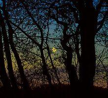 Before dark by margaretafriden