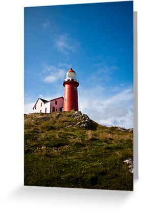 Ferryland Lighthouse by Stephen Rowsell