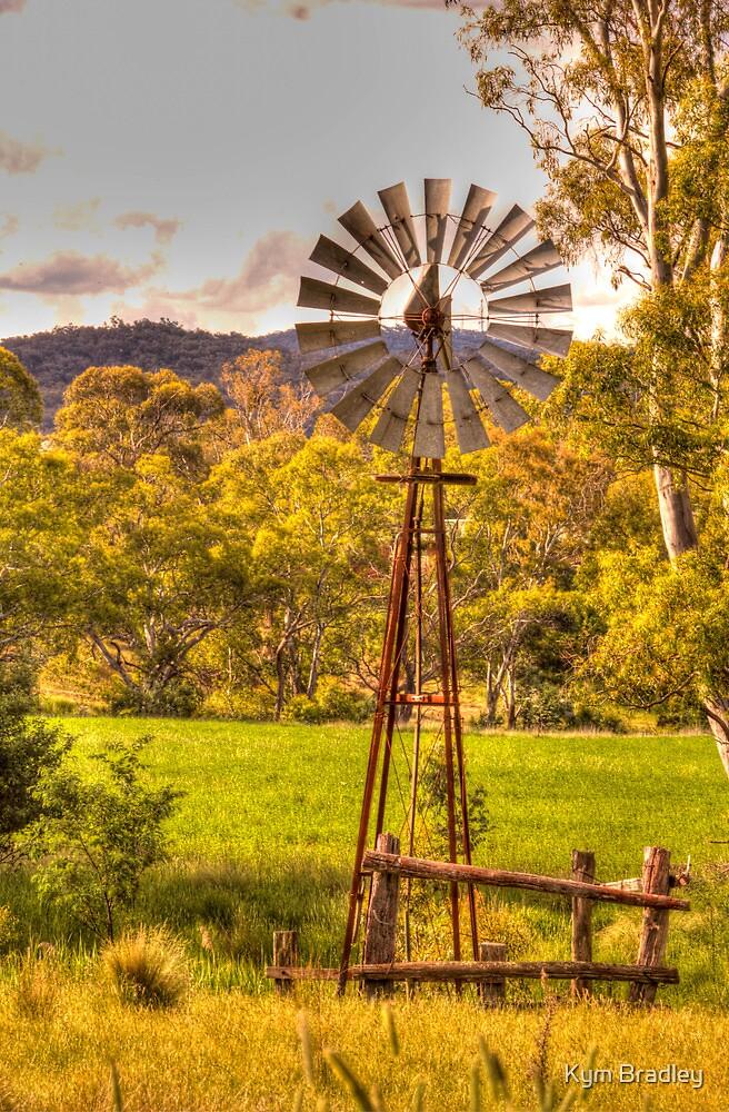 No Wind Today,  Rural NSW Windmill by Kym Bradley