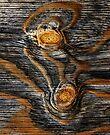 iPad Case.  Wood knots. by Alex Preiss