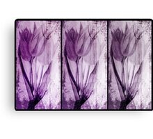 Tulips Purple Canvas Print