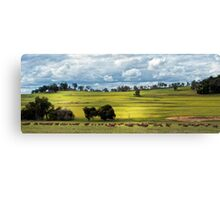Stormy sky in the wheatbelt Canvas Print