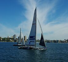On Sydney Harbour - Australia by Alison Murphy