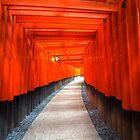 Fushimi Inari Shrine by David Byrne