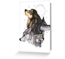 wolfpack - natural colors  Greeting Card