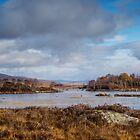 Loch Ba, Rannoch Moor, Scotland by Cliff Williams