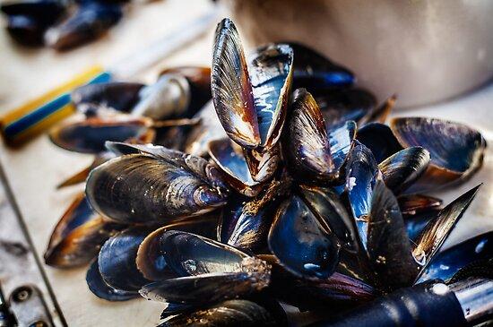 Mussels by Ruben D. Mascaro