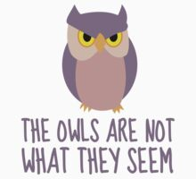 The Owls Are Not What They Seem by JennHolton