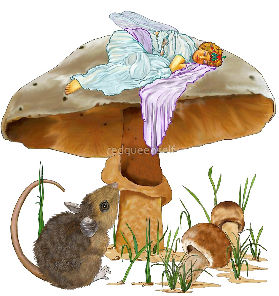 Mushroom Fairy & Mouse by redqueenself